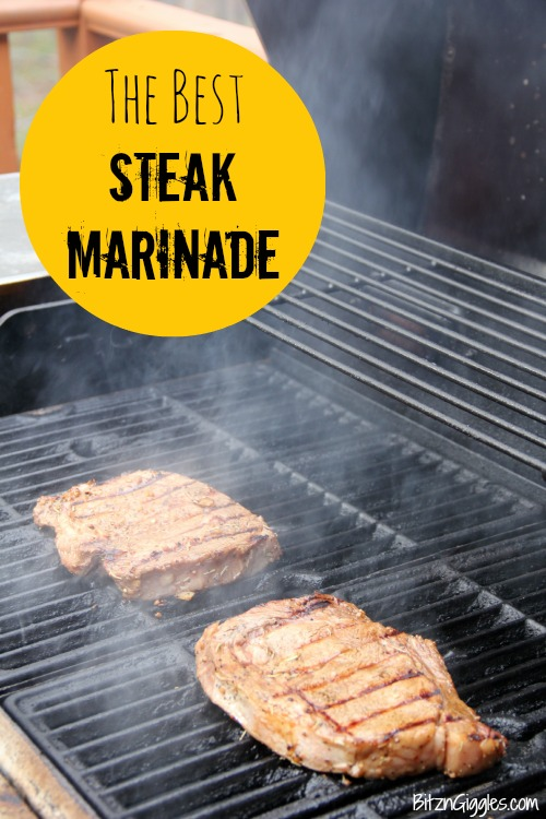 The Best Steak Marinade - A delicious and easy homemade steak marinade that's bursting with flavor! Perfect for any cut of beef, but absolutely divine on Ribeye steaks!