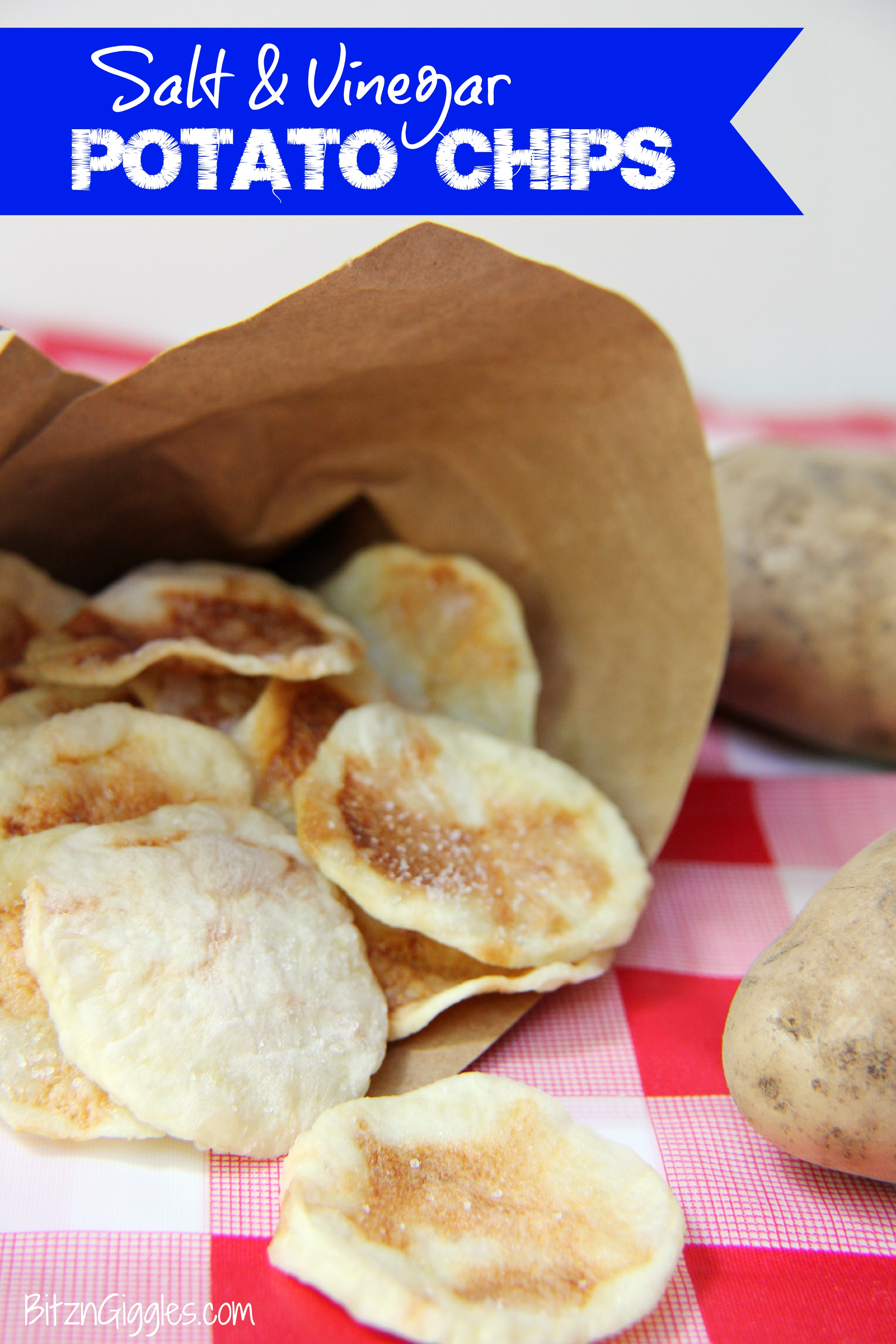 Salt and Vinegar Potato Chips - Bitz & Giggles