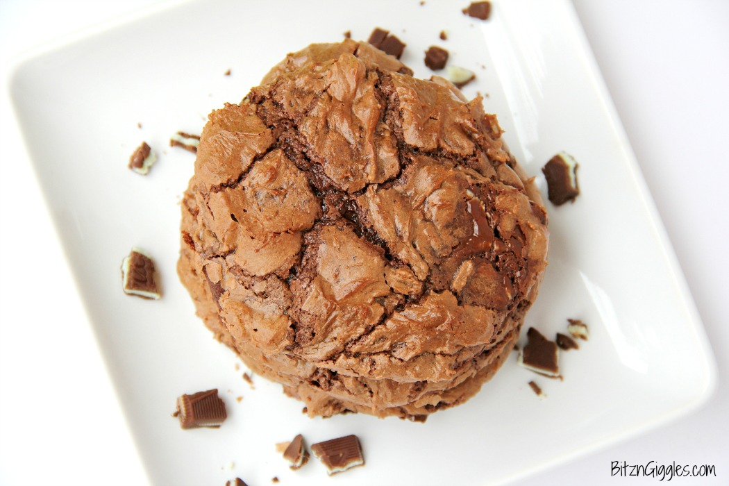 Soft and chewy chocolate fudge cookies with bits of melted Andes Mints sprinkled throughout.