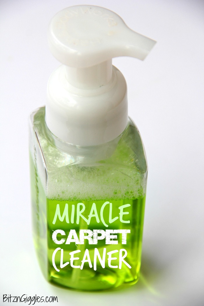 Miracle Carpet Cleaner - A homemade 4-Ingredient carpet cleaner that can get out the toughest of stains! Watch it in action by clicking through to the post!