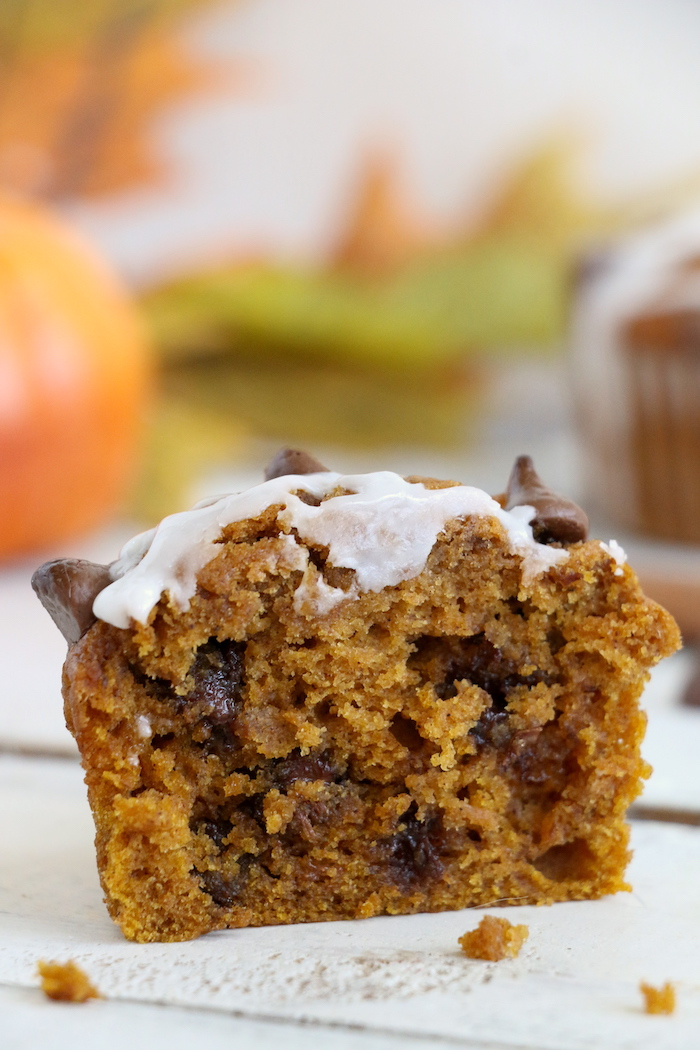 Pumpkin Chocolate Chip Muffins - Homemade pumpkin muffins sprinkled with fall spices and lots of chocolate chips!
