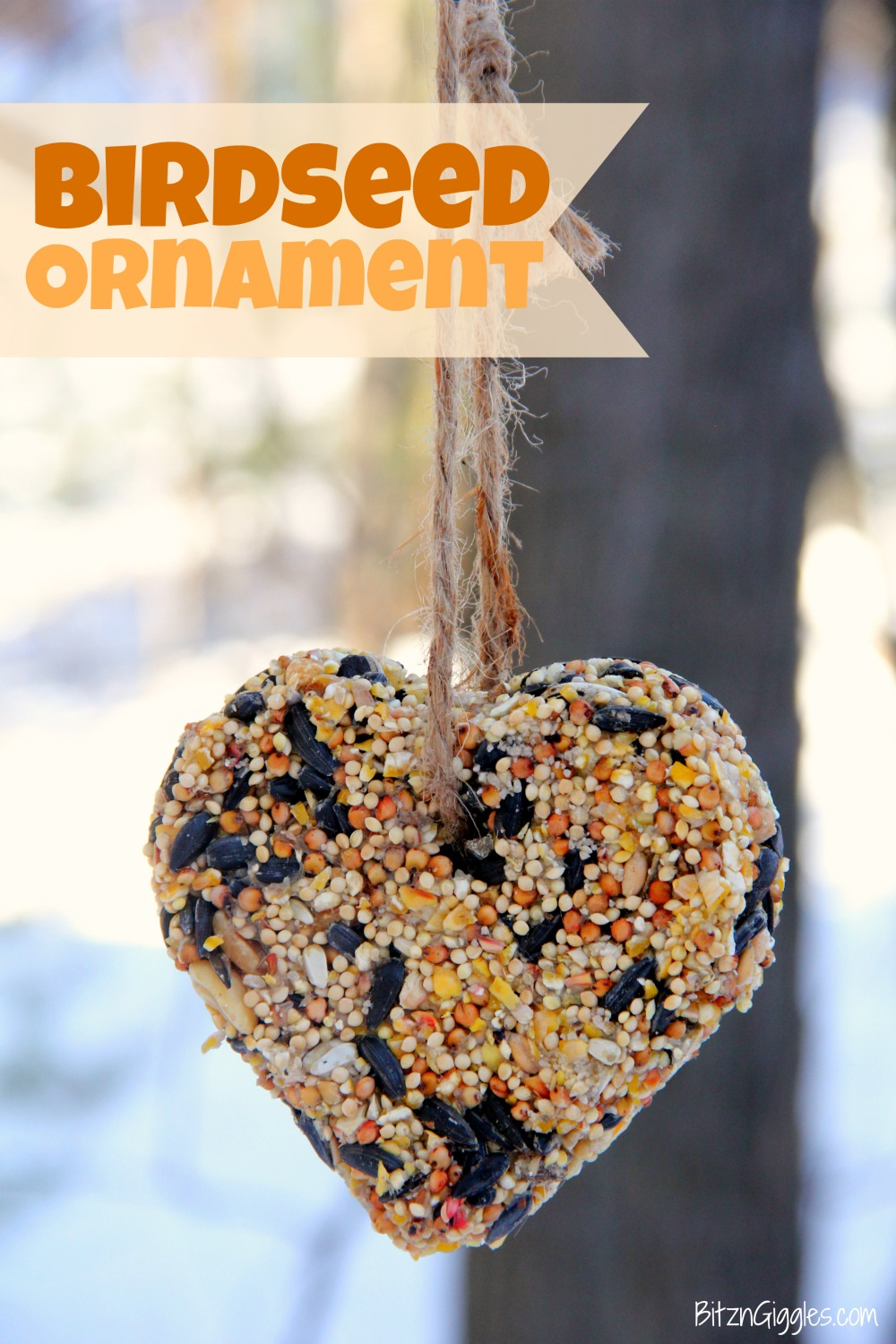 Birdseed ornament hanging from a tree