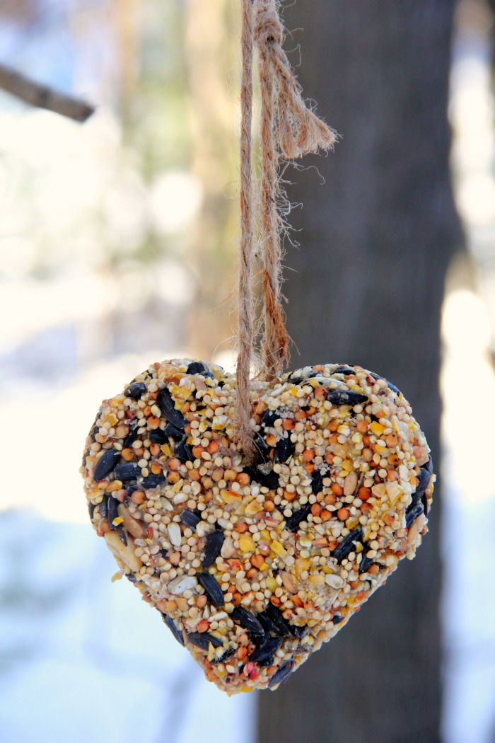 Heart-shaped birdseed ornament hanging from tree post
