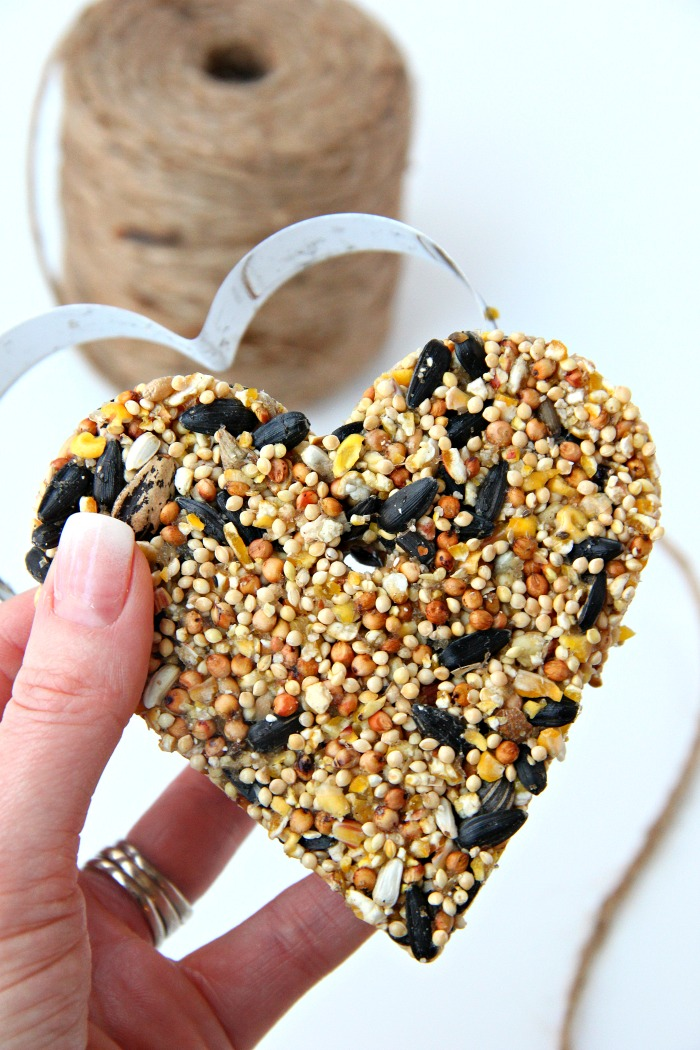 holding birdseed ornament with cookie cutter