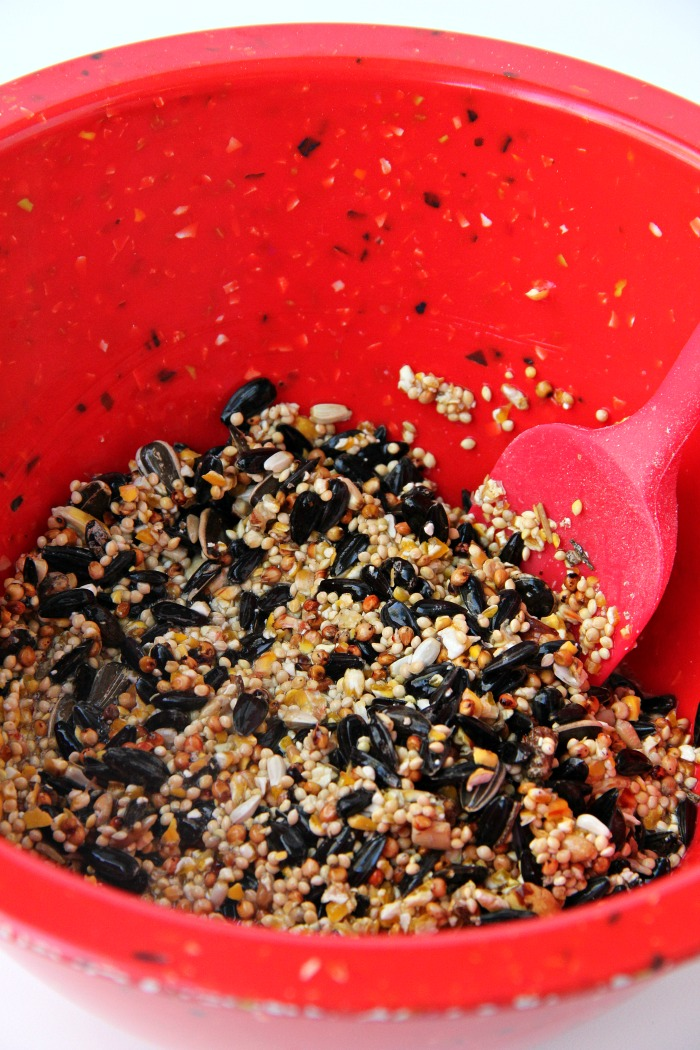 Birdseed mixture in a red mixing bowl