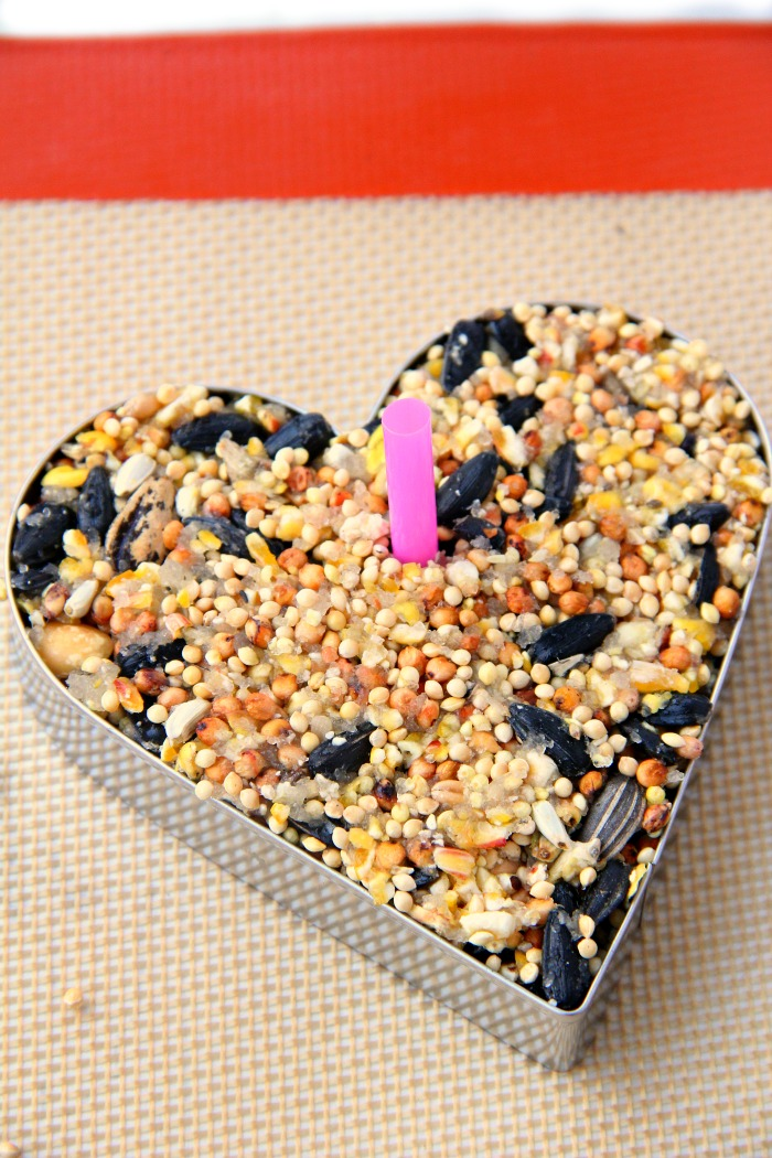 Piece of pink straw in a heart-shaped birdseed ornament