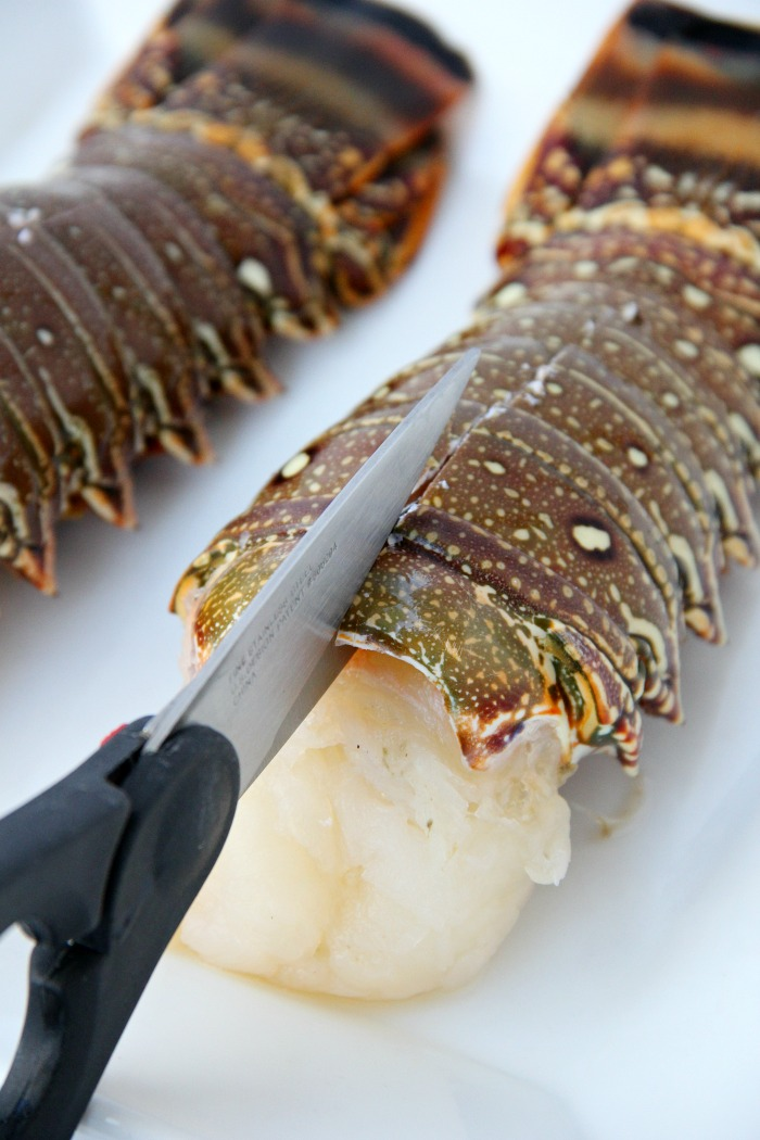 cutting through shell of lobster tail