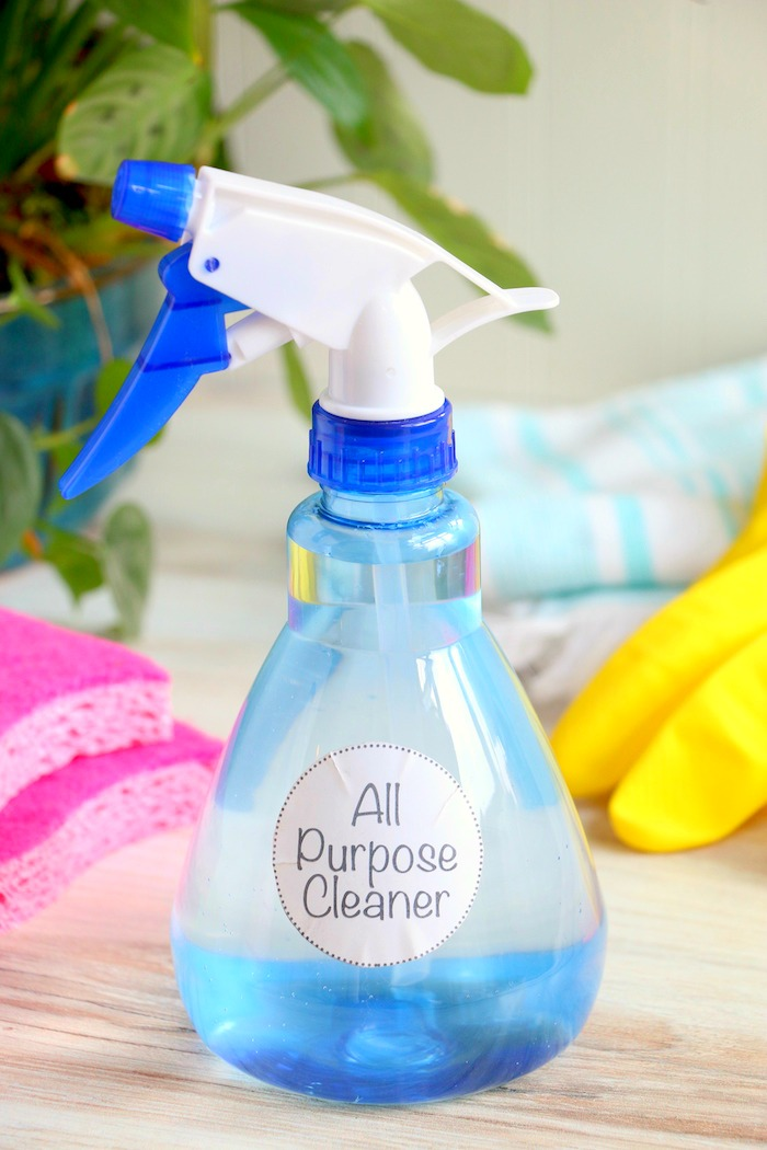 Bottle of all purpose cleaner with cleaning sponges and gloves in background
