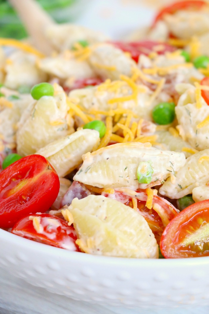 Pasta salad made with shell noodles