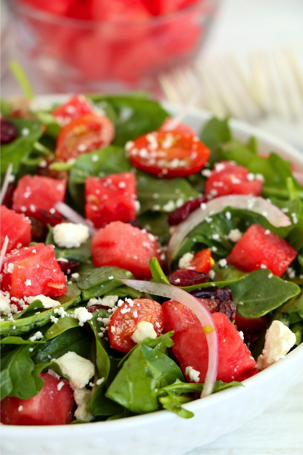 white bowl filled with watermelon feta salad