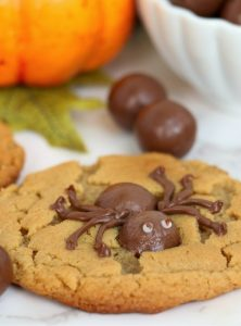Chocolate spider on the top of a peanut butter cookie
